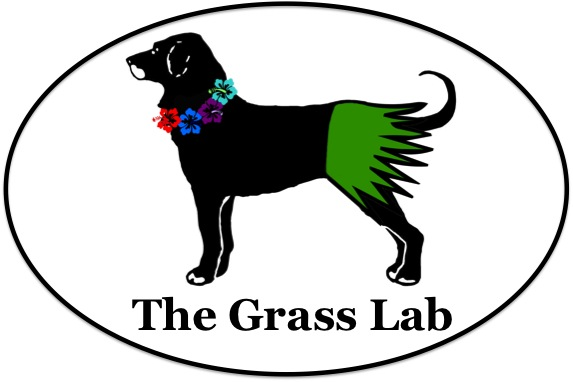 Grass Lab 2013