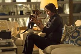 John Wick: Keanu Reeves as John Wick and Daisy | A Constantly Racing Mind
