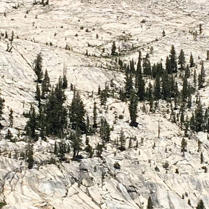 Yosemite EP (2016)
