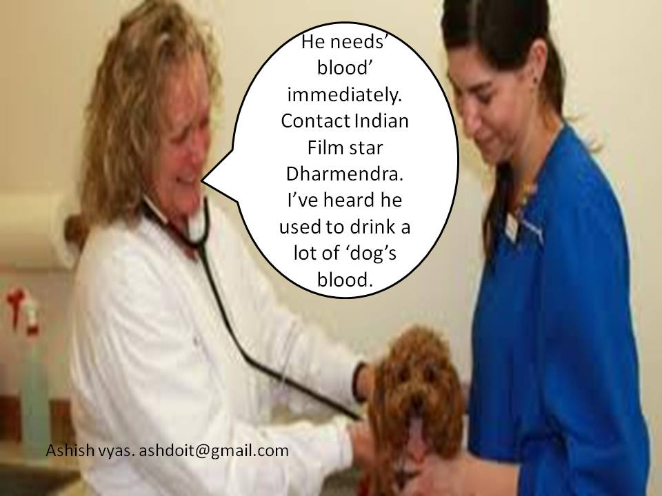 A Million Sperms When A Dog Needs Blood Urgently Only Dharmendra Can Help