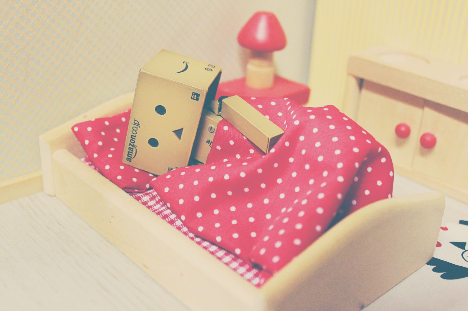 little pieces danbo bekommt ein haus. Black Bedroom Furniture Sets. Home Design Ideas