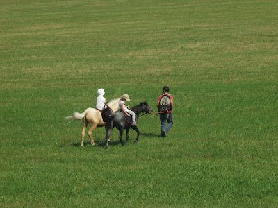 Orawa. Lipnica Wielka, Babia Góra, konie, kucyki, jazda konna, spacer w terenie