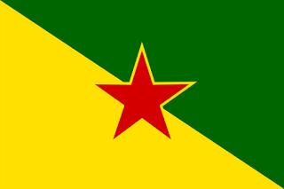 French Guiana flag drapeau Guyane française
