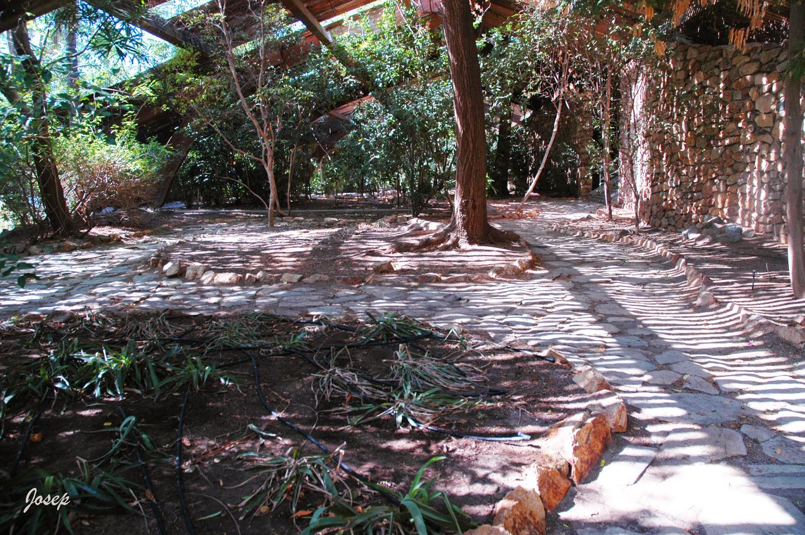Plataforma ciudadana parques y jardines sevilla denuncias for Jardin americano sevilla