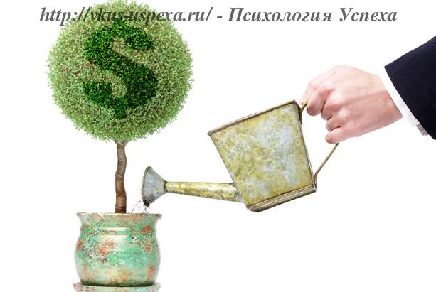 Обращение с деньгами, Денежное дерево, Как повысить свое финансовое состояние, финансовые советы