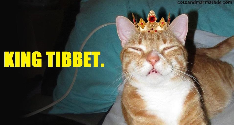 King Tibbet