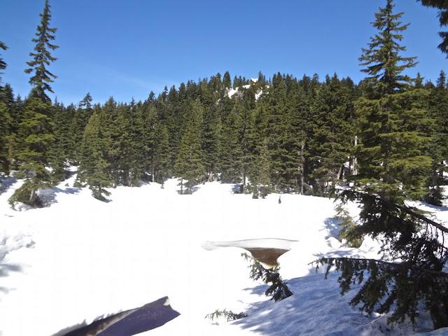 first lake, dog mountain trail