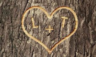 buscar el amor en Parship