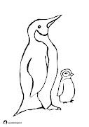 zwierzęta polarnekolorowankikarty pracy