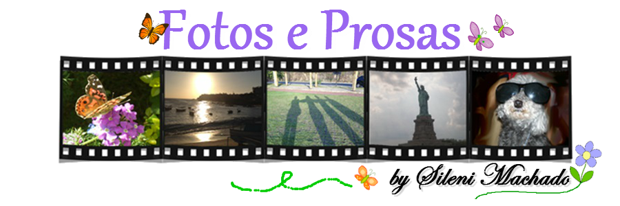 Fotos e Prosas