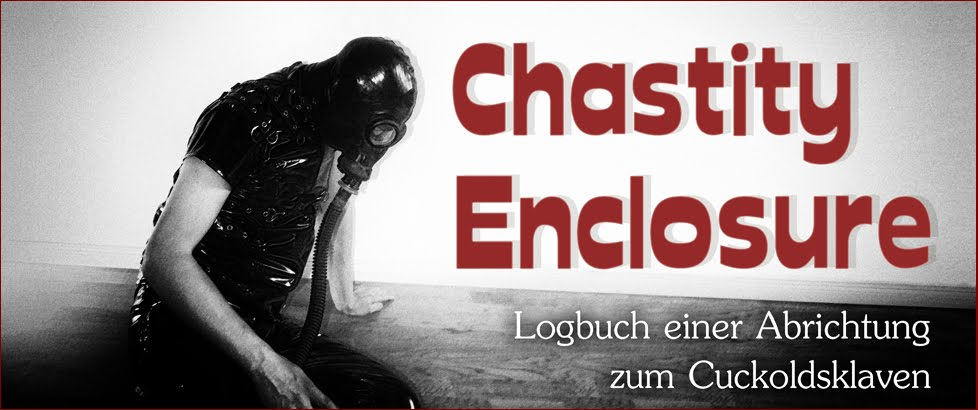 chastity enclosure