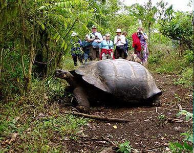 Islas Galápagos Ecuador Turismo en Galapagos