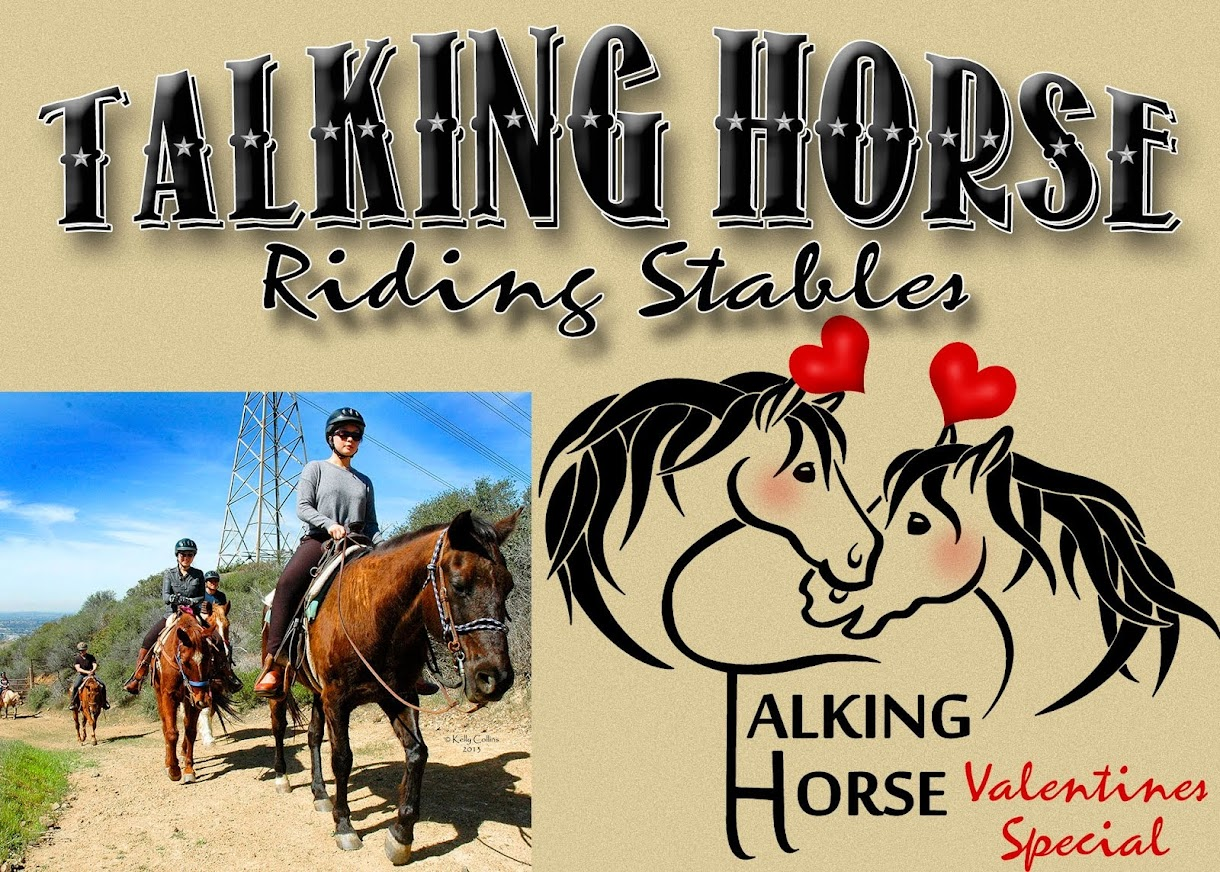 Talking Horse Equestrian Center