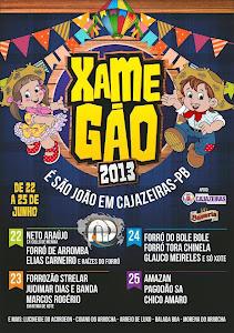 XAMEGÃO  DE  CAJAZEIRAS PB  ANO  2013
