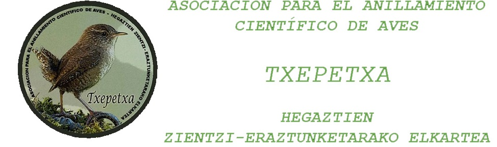 TXEPETXA.ORG Asociación para el Anillamiento Científico de Aves