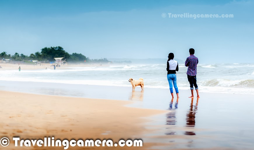 This monsoon, I was in Goa and loved driving around different parts of North & South Goa. Baga Beach was quite interesting place among different things we explored around the beautiful Goa.  Baga Beach is a popular beach and tourist destination with various options for tourists in North Goa. This Photo Journey shares some of the elements of Baga Beach which makes it different from other beaches in Goa.Baga Beach is located in north part of Goa and situated at one end of the contiguous beach stretch which starts from Sinquerim, Candolim & Calangute... Next to Baga is Anjuna Beach which also one of the popular beaches in North Goa. Baga beach has  a series of shacks, fishing boats, Water-sports options, some of the brilliant restaurants for sea food and high tides... We were staying near Candolim Beach and the day started by driving to Anjuna beach, which are disappointing during Monsoons. It was completely shut-down.. There was no eating place to have breakfast and overall space was dirty.. Black sand on the beaches made thing worse. Soon after we made our mind to move towards  Baga Beach. On reaching Baga Beach, the search for a good restaurant started. There are lot of options on the beach with nice views of the sea. Here we took the wise decision to call Dev to ask for recommended options to eat. We had hired a WagonR from Dev and he recommended us to visit Brittos for having Goan Sea-Food. And I must say that it was awesome. We had Crabs and Prawns at Brittos with some Coconut Feni. The best part was seating arrangement at Brittos. Most of the tables are aligned in such a way that guests get a nice view to the Baga beach, which remains full of tourists, most of the time. This is one of the most crowded beach of North Goa. Calangute is another over-crowded beach in Goa. Monsoon is considered as off season in Goa and during Monsoons, Calangute was very crowded.While sitting at Brittos, we didn't want to leave our seats as it was giving beautiful views of the beach by being under a shed. Most of the photographs used in this Photo Journey are shot while sitting at Brittos at Baga Beach. We had multiple orders at Brittos, since we didn't want to leave the seats. At that point of time, I couldn't appreciate the taste of Feni so ordered beer in subsequent rounds :). While enjoying the sea food at Brittos, we observed different vendors selling stuff to tourists at the beach. The photograph on the left shows the lady vendor who was selling trinkets on the beach. We observed that almost everyone negotiated with lady, but she sold to 80% of the folks who negotiated. These observations made us think that negotiation is must and followed the same rule while went to the beach. We bought 3 things from the lady at 30% of the original cost quoted. Although we realized that the absolute amount paid was much higher than what is asked in the Baga market :).We observed many of the tatoo artists roaming around the beach and asking tourists to choose appropriate designs to be tatooed on their bodies. These were all temporary tatoos and having a tatoo in Goa is a popular trend and most of the folks prefer to have one or more Tatoos in Goa. We observed max number of Tatoo artists at Baga Beach and the other beach was Calangute, where we met few Tatoo Artists. During the visit, we met a very creative Tatoo Artist, who is considered as one of the best Tatoo artists who was honored by Goa Tourism as well. We shall do a separate story on David, along with his special Tatoo designs & celebrities, who chose him to create tatoos for them.  Most of the tourists at Baga Beach love to have a comfortable place to sit & enjoy the awesome environment which is difficult to find in other parts of the world. While having food at Brittos, we overheard that dolphins can also be located at around 5 kilometers from the shoreline, but we forgot to confirm this fact. The name of the beach has come from Baga creek, which empties into the Arabian Sea at the northern end of the beach. On the beach there are options for tourists to have head/foot massage while enjoying your drink on beach-side.Baga beach is also a popular beach for Parasailing, Watersports and Dolphin cruises. During Monsoons, there was hardly anything to do on the beaches but most of the folks prefer to have fun with high tides of the sea and their friends. we observed some of the beach-restaurants playing loud music. The photograph on the left shows a group of tourists having fun in music and water waves of the sea. There were many such groups at Baga Beach and this is pretty different from any other beach in North Goa. All other beaches have restaurants at distance and there were hardly any shacks during monsoons. If you plan for Goa and want to have a good time on a lively beach with water sports, then Baga beach is a good option for you and you must visit it. Although, at the same time, my personal favorite was Candolim beach, because of the type of crowd this beachgets, not so crowdedness and relatively peaceful to have some private space on the beach-sand. If you opt for Baga Beach, then you must compromise on beach cleanliness and crowd quality... There are plenty of shacks at Baga, but only a few are good, so choose carefully. Sitting on a laid back beach seat, enjoying the sun set while sipping cocktails is a must! Many of the families also come of this beach and some large tourists can be seen around the beach. This photograph shows the jeeps on beach which ensure that tourists don't go to the danger zone of the sea and be safe. They used to warn folks going inside the sea and many times, one or two folks used to go & bring people back. These jeaps were there on almost every beach, except Candolim. We saw those at Calangute & Miramar as well. Baga Beach in north Goa may be touristy and busy but for those who like action, it's one of the most happening beaches on the coast. It's a place for party lovers and many of the options that a tourist wants in Goa. Although water-sports were not available during the monsoons but it seems that parasailing & watersports are quite cheap at Baga Beach, but quality should be expected on same parameters. Overall experience may becomeworthwhile if you are ready to pay more to the folks offering those services.Finally we had a walk around the beach and chose to leave for Calangute. Most of the time was spent at a restaurant which exposed us to different activities happening on beach and now it was time to move on... More Photo Journeys from Goa will follow soon...
