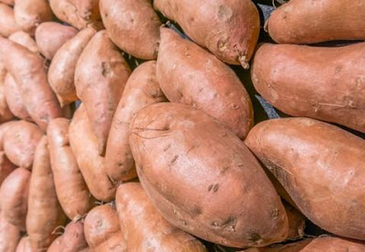 Ubi Jalar, Sumber Vitamin B6 Yang Menyehatkan