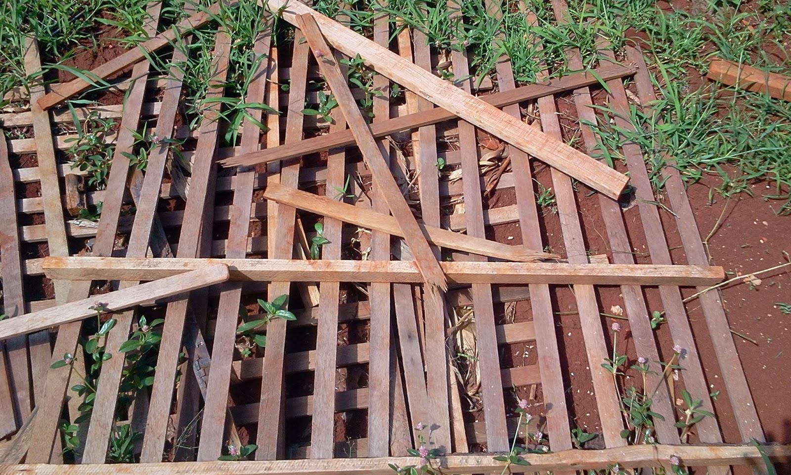 trelica de madeira jardim vertical:de orquídeas por isso parecem  #8F5A3C 1600x962