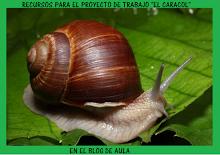 """RECURSOS EN EL BLOG DE AULA PARA EL PROYECTO""""EL CARACOL"""":"""