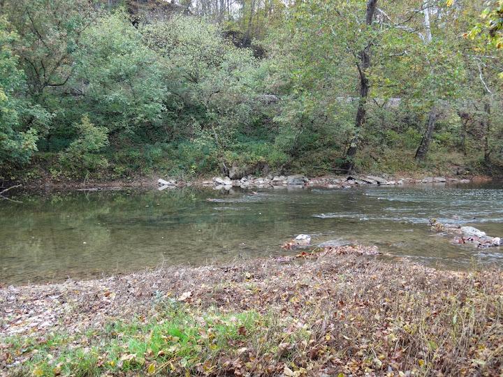Ben cantrell 39 s fish species blog va nc trip part 8 for Clinch river fishing