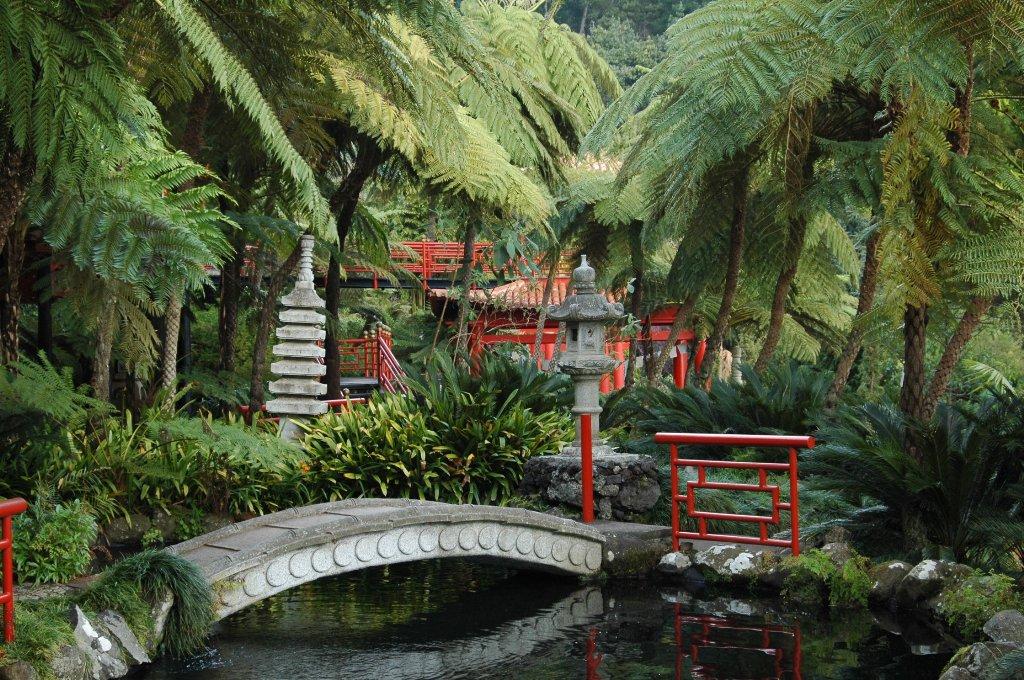 Floraciones en m laga y m s jard n tropical monte palace for Estanques japoneses jardin