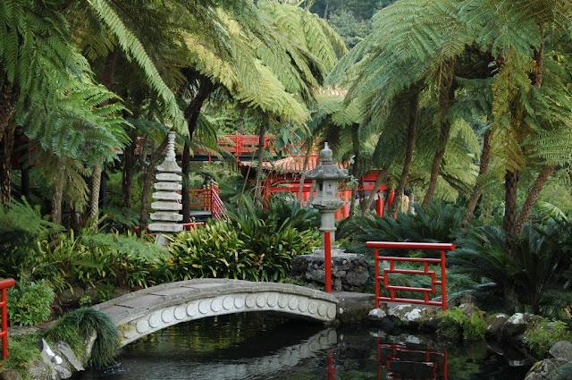 Floraciones en m laga y m s jard n tropical monte palace Jardin japones informacion