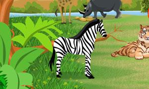 Safari Animals Hidden