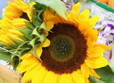 Focus on Life: Week 33 ~ In season: The farmer's market in Burlington, ON, a lovely late summer harvest: sun flower :: All Pretty Things