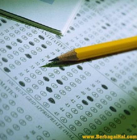 Alasan Kenapa Harus Menggunakan Pensil 2b Saat Mengerjakan Ljk [ www.Up2Det.com ]