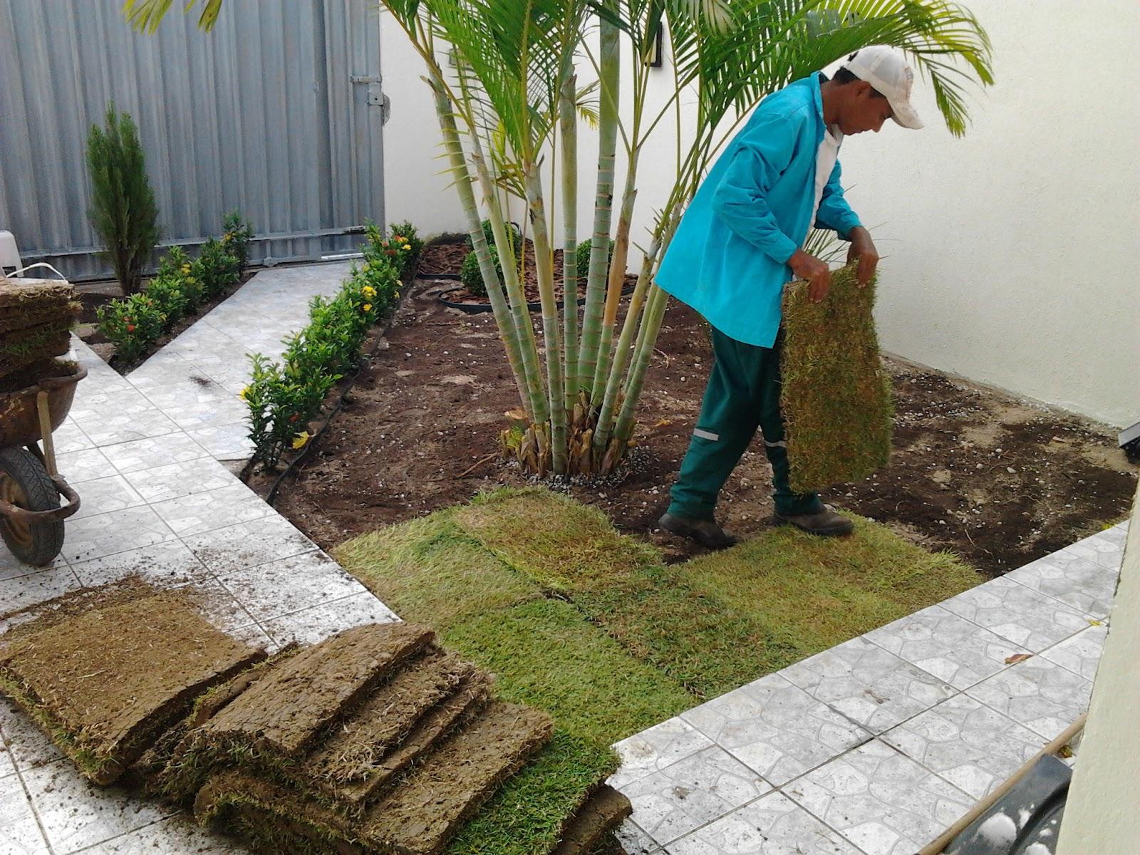 fotos jardim paisagismo:Real – Paisagismo: Jardim na Residência do Advogado Dr. André Luís