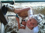 Farm Camp!