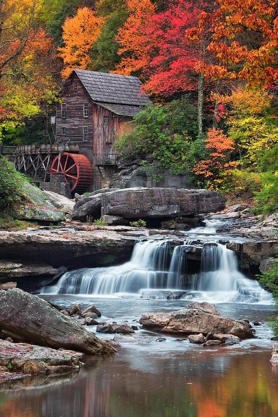 Bobby Brown State Park U.S.