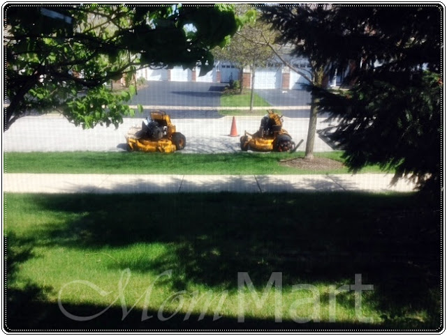 Lawn Mowing Machines