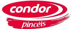 Pincéis Condor