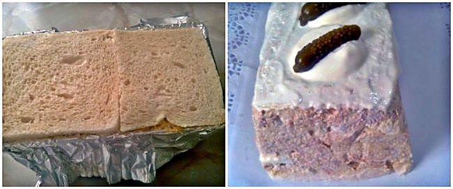 Preparación del pastel frío de atún