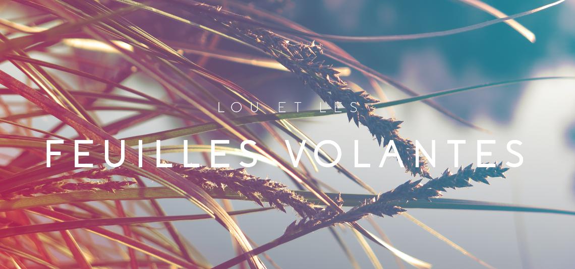 Lou et les feuilles volantes
