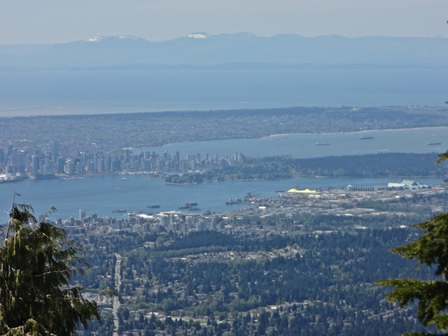 views of vancouver downtown from dog mountain