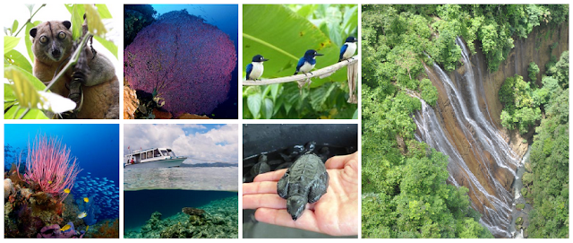 "Provinsi Maluku Utara - Berbagai Objek Wisata di ""Spice Islands"""