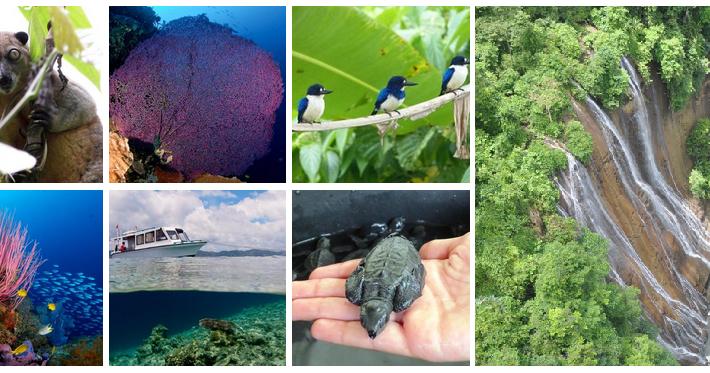 10 Tempat Wisata Halmahera Tengah Yang Wajib Dikunjungi Provinsi Maluku Utara Wisata Di Indonesia