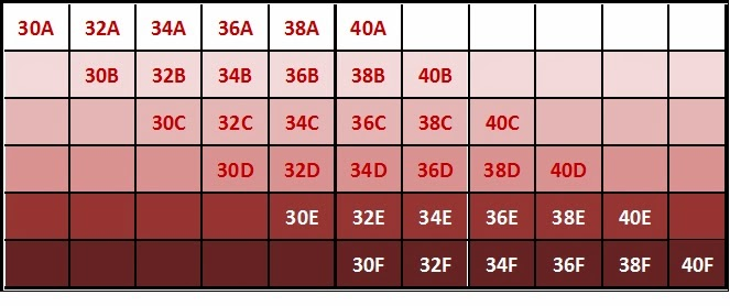 Determine your bra size with this table