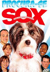 Procura-Se Sox Dublado Online
