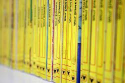 Storia delle costine gialle di Topolino