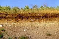 tanah-tandus-akibat-pemakaian-pupuk-kimia-berlebih-tanpa menggunakan-produk-pupuk-organik-nasa
