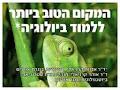 אוניברסיטת חיפה - אורנים