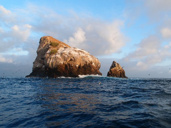 Gordon Rocks, Galapagos