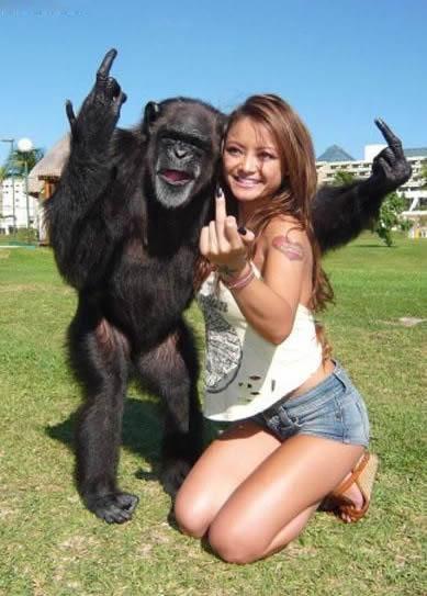 funny monkey. Funny Monkey; Funny Monkey