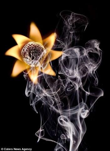 النار... amazingbeautifulcool