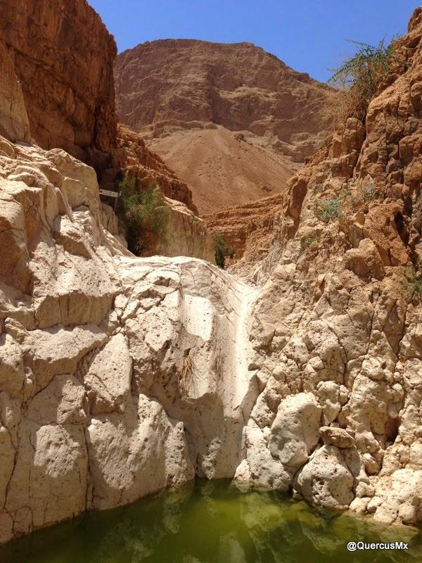 Fosa en el cañón seco de Wadi David