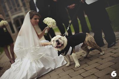 novia con un ramo y su perro