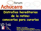 Nueva charla sobre distrofias hereditarias de la retina